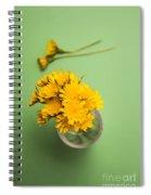 Dandelion Flower Clippings Spiral Notebook