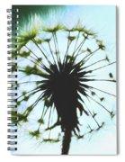 Dandelion Halo Spiral Notebook