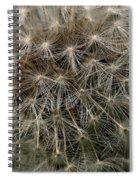 Dandelion Head Spiral Notebook