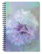 Dandelion In Pastel Spiral Notebook