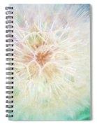 Dandelion In Winter Spiral Notebook
