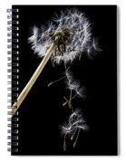 Dandelion Loosing Seeds Spiral Notebook