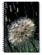 Dandelion Seedball Spiral Notebook
