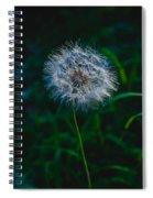 Dandelion Seeds 2 Spiral Notebook