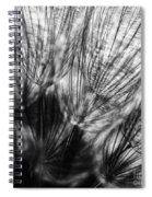 Dandelion Seeds I Spiral Notebook