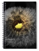 Dandelion Spotlight Spiral Notebook