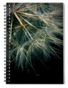 Dandelion Thirty Seven Spiral Notebook