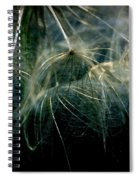 Dandelion Thirty Two Spiral Notebook