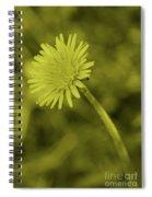 Dandelion Tint Spiral Notebook