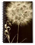 Dandelion Twenty Eight Spiral Notebook