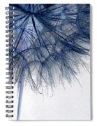 Dandelion Twenty Five Spiral Notebook