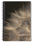 Dandelion Twenty Spiral Notebook