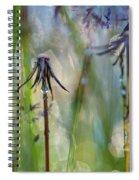 Dandelions Close-up Spiral Notebook