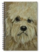 Dandie Spiral Notebook