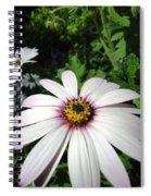 Dandy Daisy Spiral Notebook
