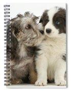 Dandy Dinmont Terrier And Border Collie Spiral Notebook