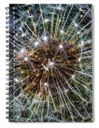 Dandy Universe Spiral Notebook