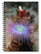 Dangerous Underwater Flower Spiral Notebook
