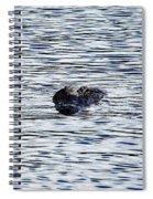 Dangerous Waters  Spiral Notebook