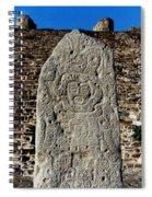 Danzantes Stone Spiral Notebook