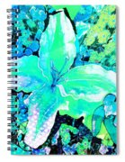 Dappled Light Spiral Notebook
