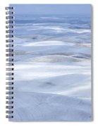Dappled Sun Spiral Notebook