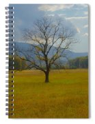 Dare To Stand Alone Spiral Notebook