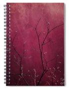 Daring Pink Spiral Notebook