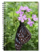 Dark Blue Tiger #3 Spiral Notebook