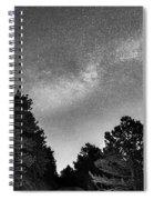 Dark Forest Night Light Spiral Notebook