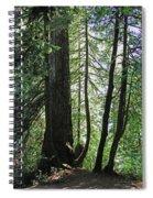 Dark Forest  Spiral Notebook