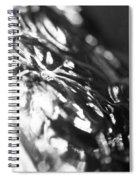 Dark Glass Spiral Notebook
