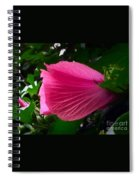 Dark Pink Beauty Spiral Notebook
