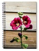 Dark Pink Hollyhocks Spiral Notebook