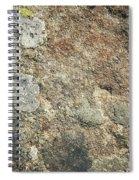 Dark Sandstone Surface With Moss Spiral Notebook