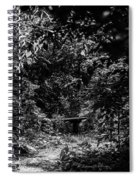 Dark Summer Woods Spiral Notebook