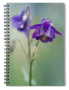 Dark Violet Columbine Flowers Spiral Notebook