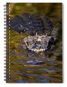 Dark Water Predator Spiral Notebook