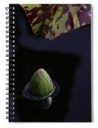 Dark Water Spiral Notebook