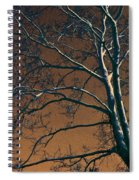 Dark Woods II Spiral Notebook