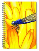 Darning Needle Spiral Notebook