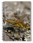 Darter 2 Spiral Notebook