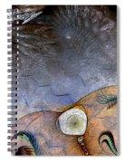Darwin's Dilemma Spiral Notebook