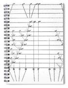 Darwins Scheme For Evolution Of Species Spiral Notebook