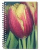 Dash Of Delicate II Spiral Notebook