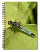 Dasher In My Pond Spiral Notebook