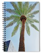 Date Palm In The City Spiral Notebook