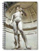 David By Michelangelo Pencil Spiral Notebook