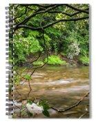 Davidson River Spiral Notebook
