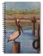 Davis Bayou Spiral Notebook